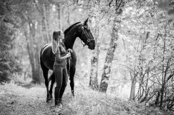 Hästporträtt_fotografistockholm_Stockholm_hästfotograf_fotograf_häst