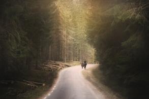 skog ps